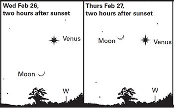 2020Feb26&27--Moon&Venus_final.png